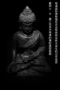 敬请国际佛教僧尼总会帮我转发昨天发生的记实圣迹 ——看到H.H.第三世多杰羌佛的佛陀真容面貌